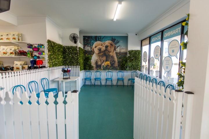 DogTech Training Centre