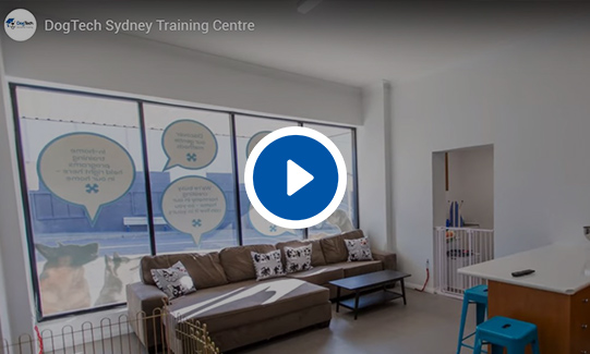 DogTech® Sydney Training Centre Video